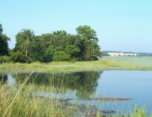 Marsh Park Ref Photo