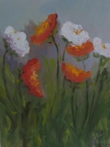 Impressionist's Poppies