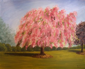 Susan's Weeping Cherry