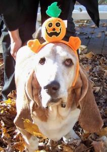 Truman Pumpkin