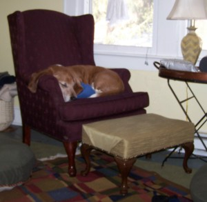 Truman in Chair