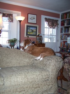 Truman's perch