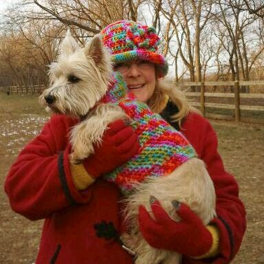 Crocheted Dog Sweater Pattern (3/3)