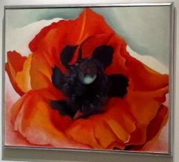 O'Keeffe, Poppy, 1927