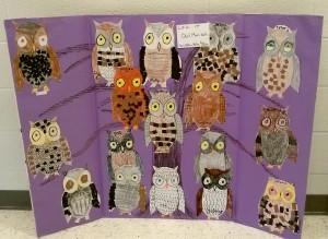 Art Festival Owls