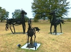 Horses at HHI 1