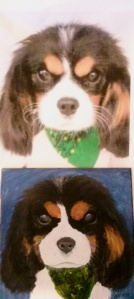 Oliver photo (top) Oliver Portrait (bottom)