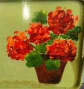 We will paint geraniums similar to these.