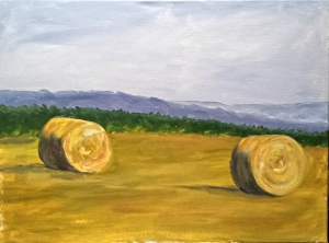 Hay Bales and Mountain Range