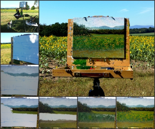 Oxbow Sunflower Collage