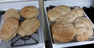 Loaves of Grandmother's Bread ready to go home