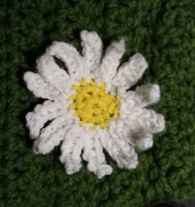 Close-up of the daisy on Daisy's sweater