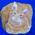 bob-cat