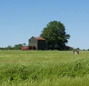 Tobacco Barn NC 2