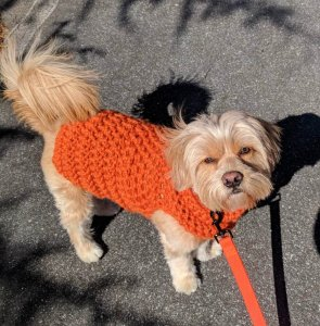 Duffy's Sweater Pattern