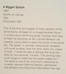 Hockney Splash 1