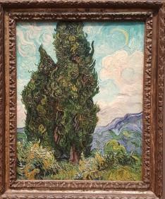 Van Gogh Cypress 2