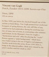 Van Gogh Irises 1
