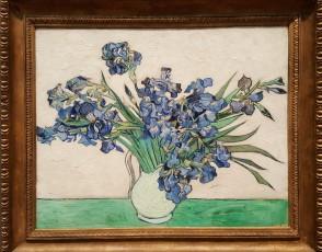 Van Gogh Irises 2